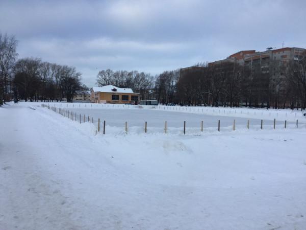 Платный каток в Парке Ветеранов 16.01.15