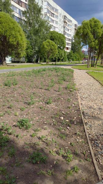 Проверка аукциона на Фрязиновский парк.jpg