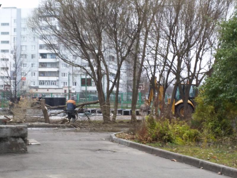 Незаконные работы у 41 школы в Вологде (5).jpg