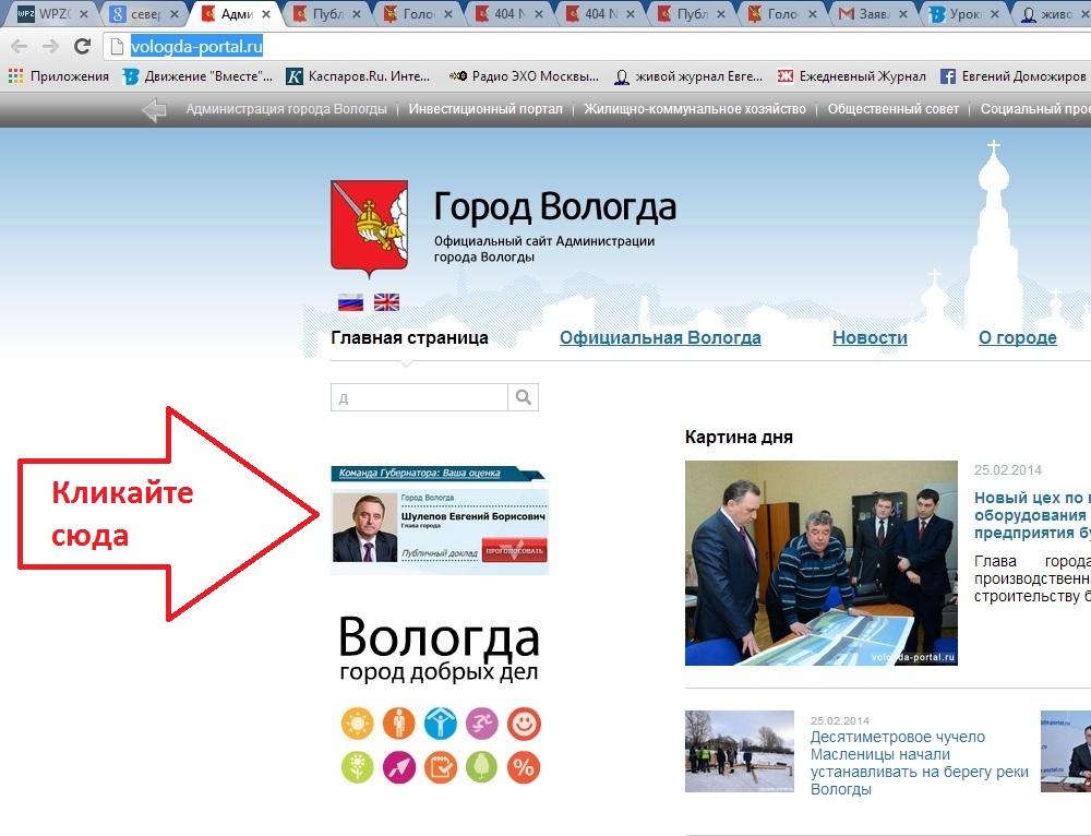 Публичный доклад Евгения Шулепова за 2013 год.