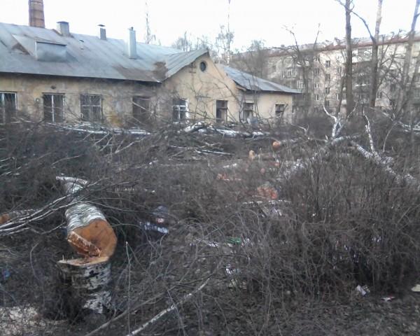 Вологда. Пролетарская 75 (10)