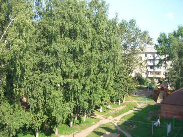 Вологда. Пролетарская 75 (7)