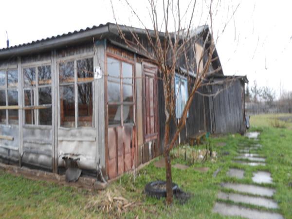 Анна Офицерова деревня Васютино Сокольский район (3)