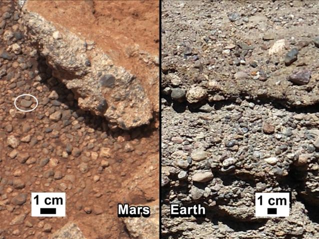 Mars-kamuschki
