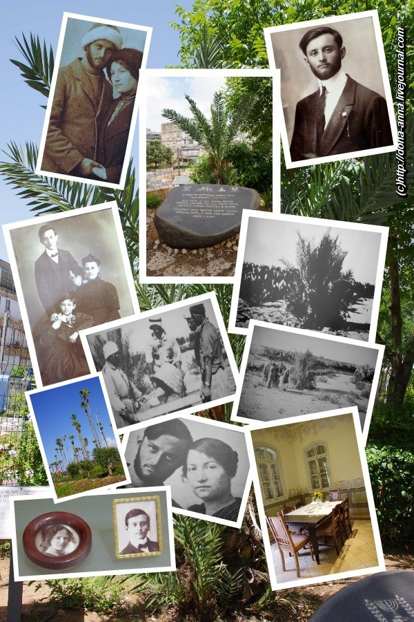 fainberg3-collage-a.jpg