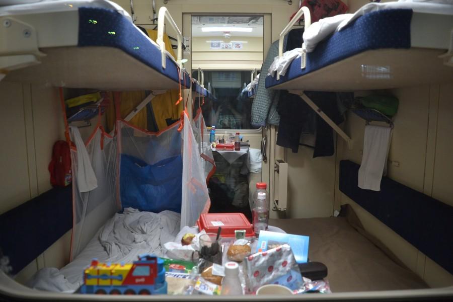 Поезд северная пальмира санкт петербург адлер фото