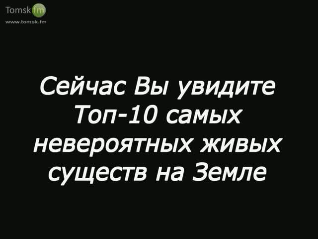 a8b94d2d-3aa3-4ace-9735-be0f0be2fcda