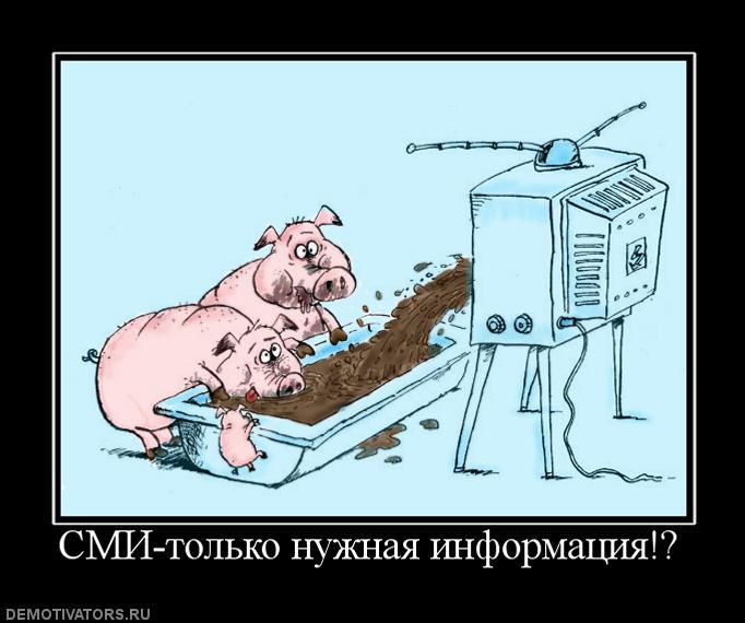 394962_smi-tolko-nuzhnaya-informatsiya(3)
