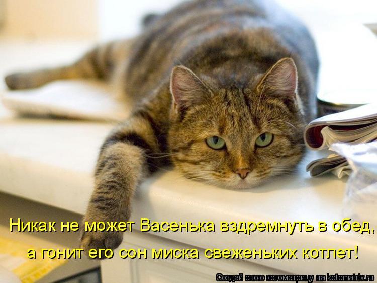 22.Nikak_ne_mozhet_Vasenka_vzdremnut_v_obed.