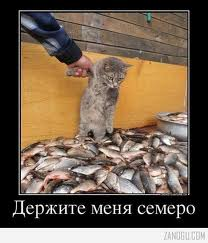images (10)