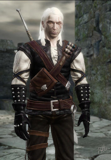 dark_witcher_mod