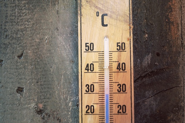 thermometer-1696961_640