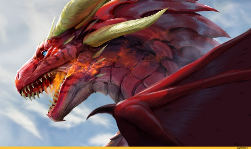 Книжная суббота. Слово о драконе