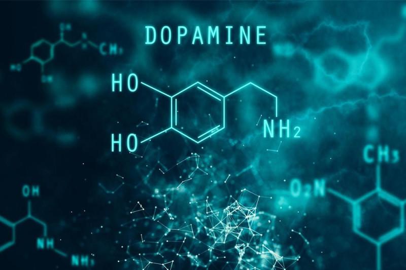 Шиза, наркотики и паркинсонизм: дофамин