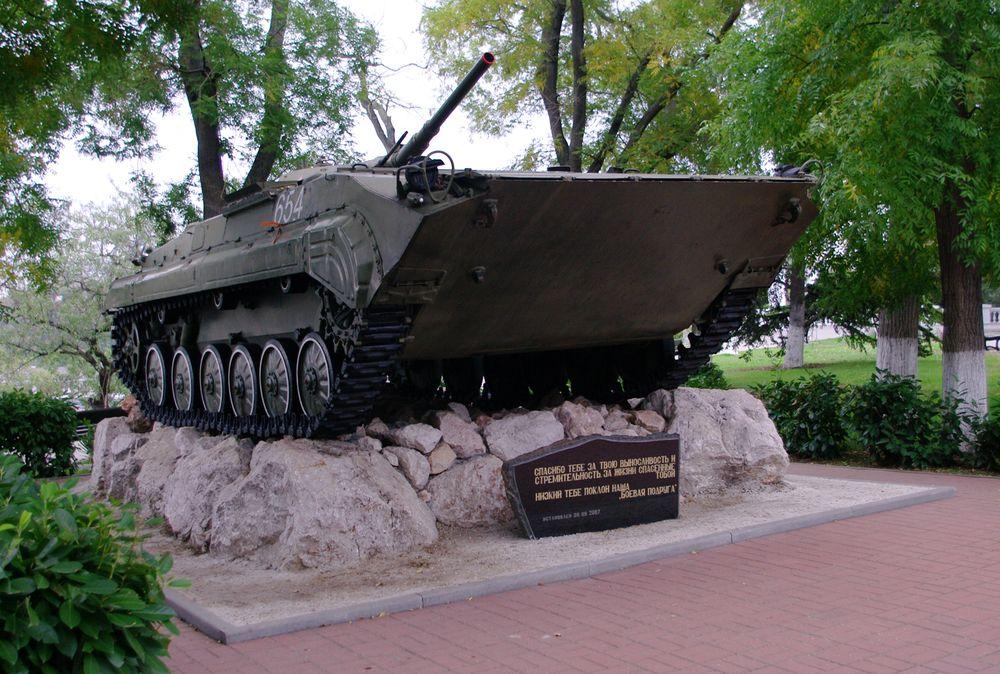 Sevas_BMP-1.jpg