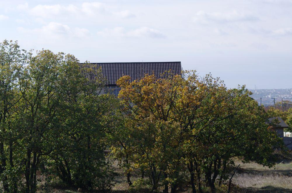 365_house.jpg