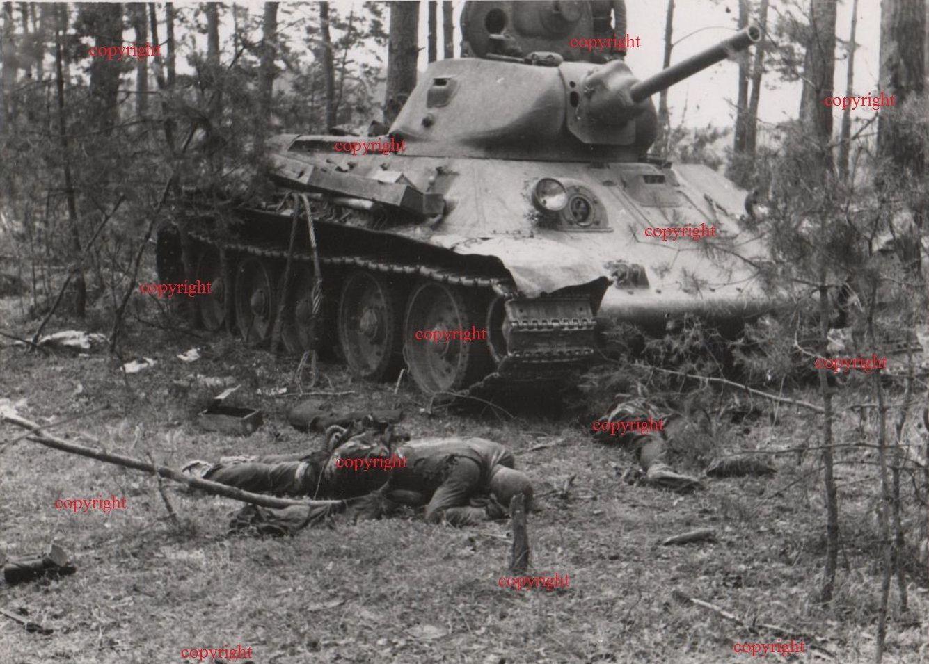 T-34_Leshnev_dead.jpg