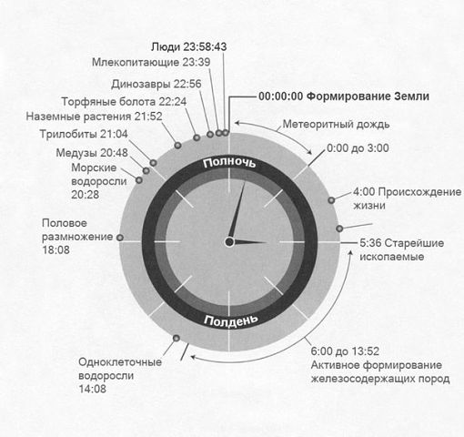 Часы эволюции