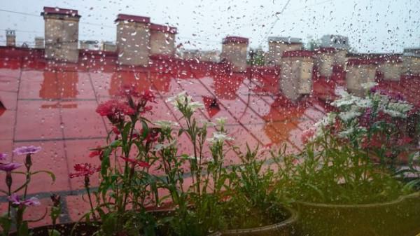 Вид из нашего окна. Дождь