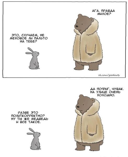 Medved v shube