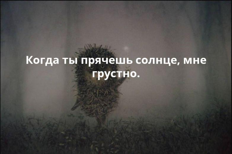 Ежик в тумане картинки с цитатами строга даже