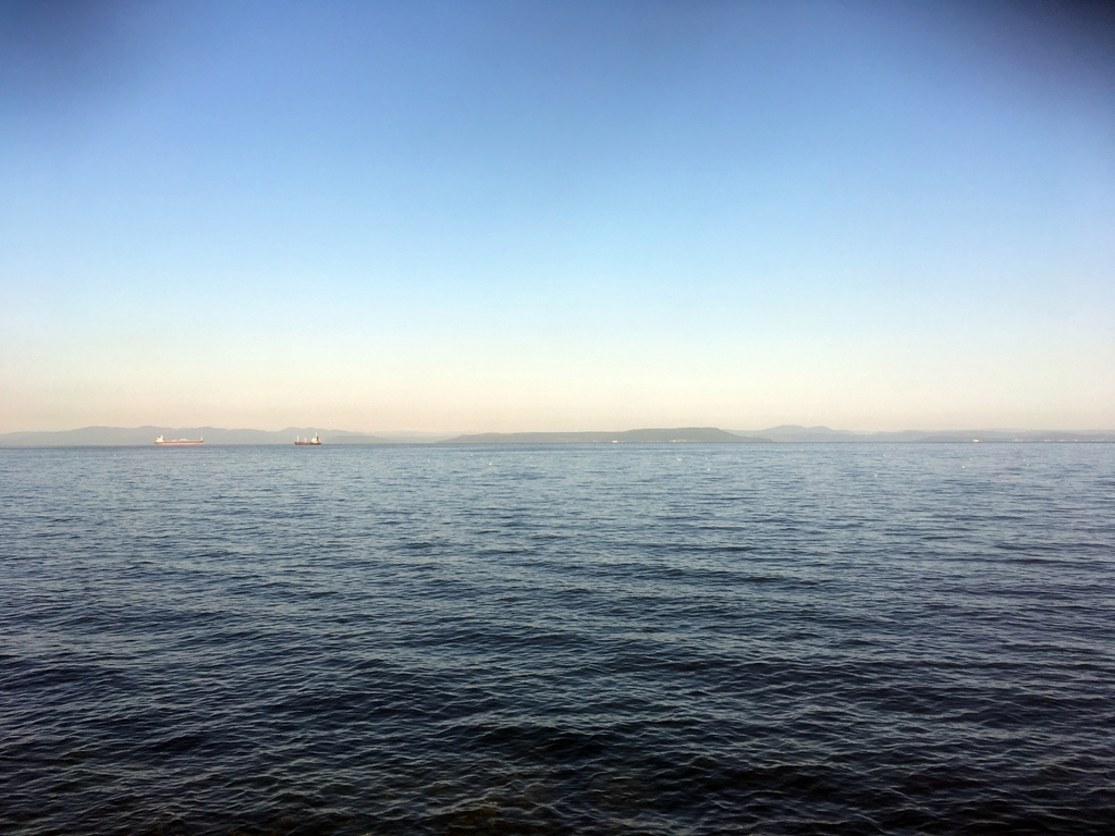 Утренний улов