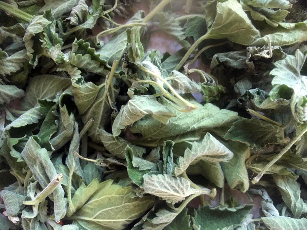 Гастрономические ароматы осени