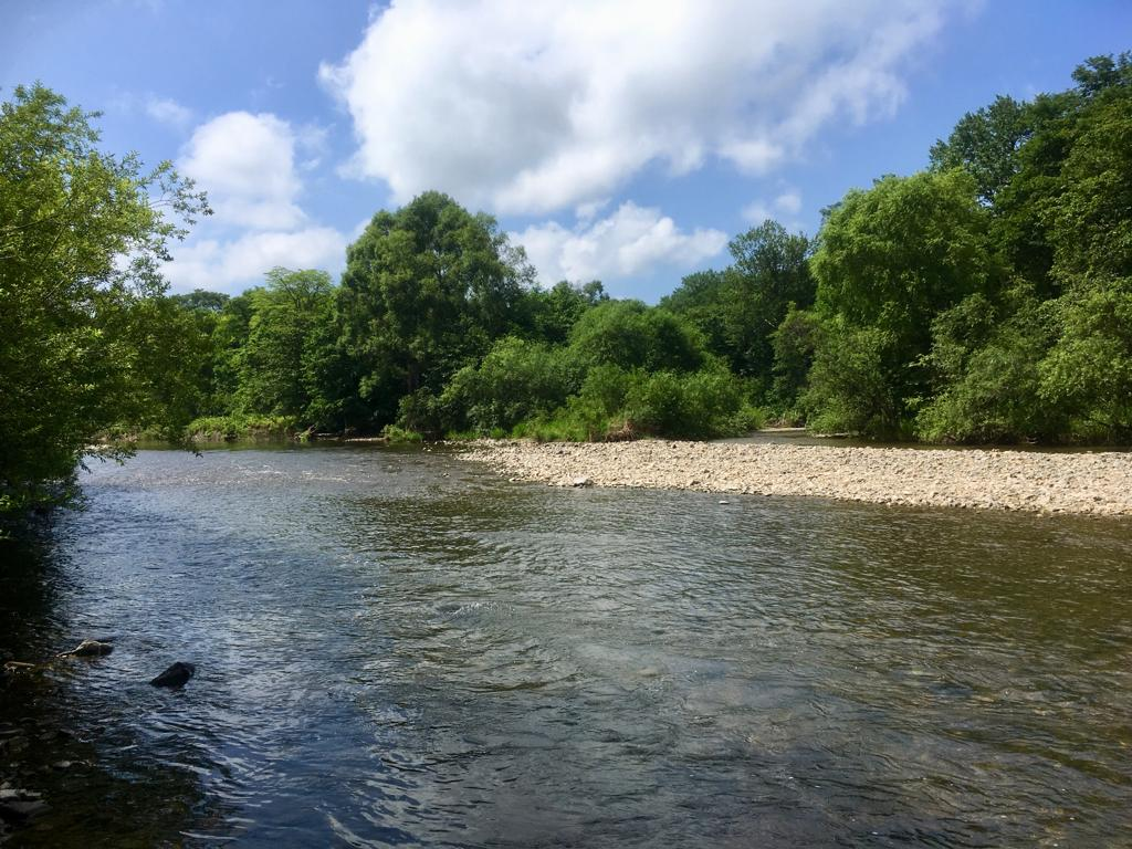 Река Тигровая или в поисках тишины