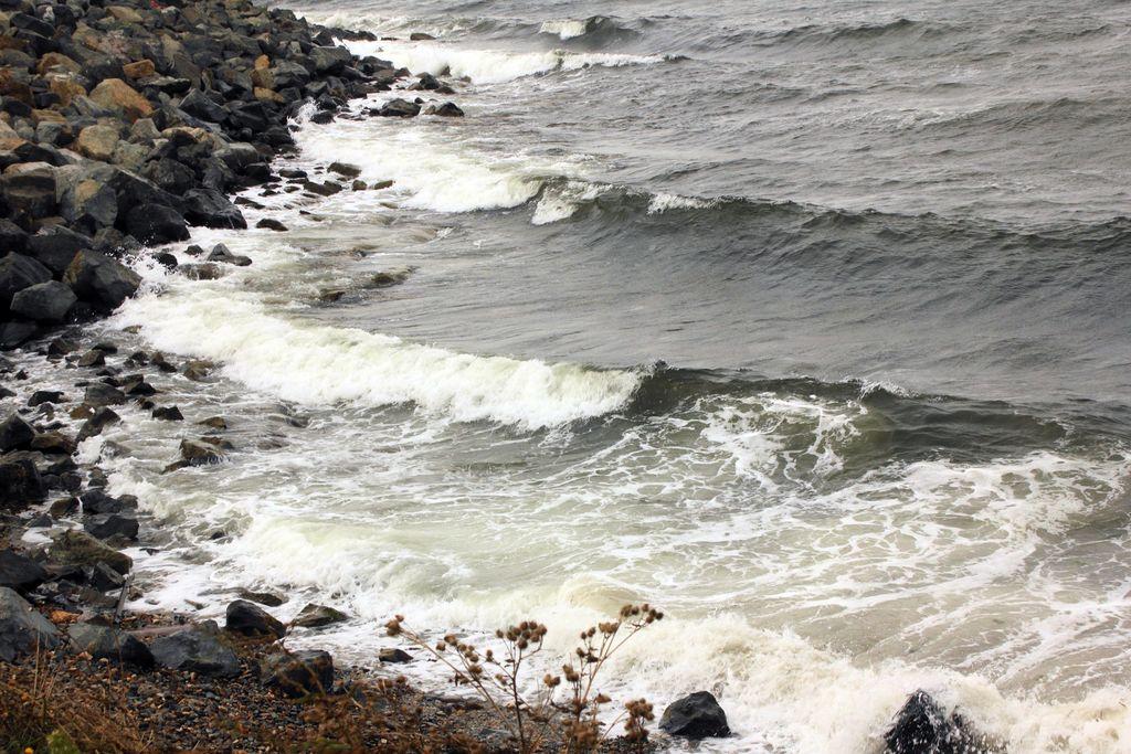 Море волнуется, раз...