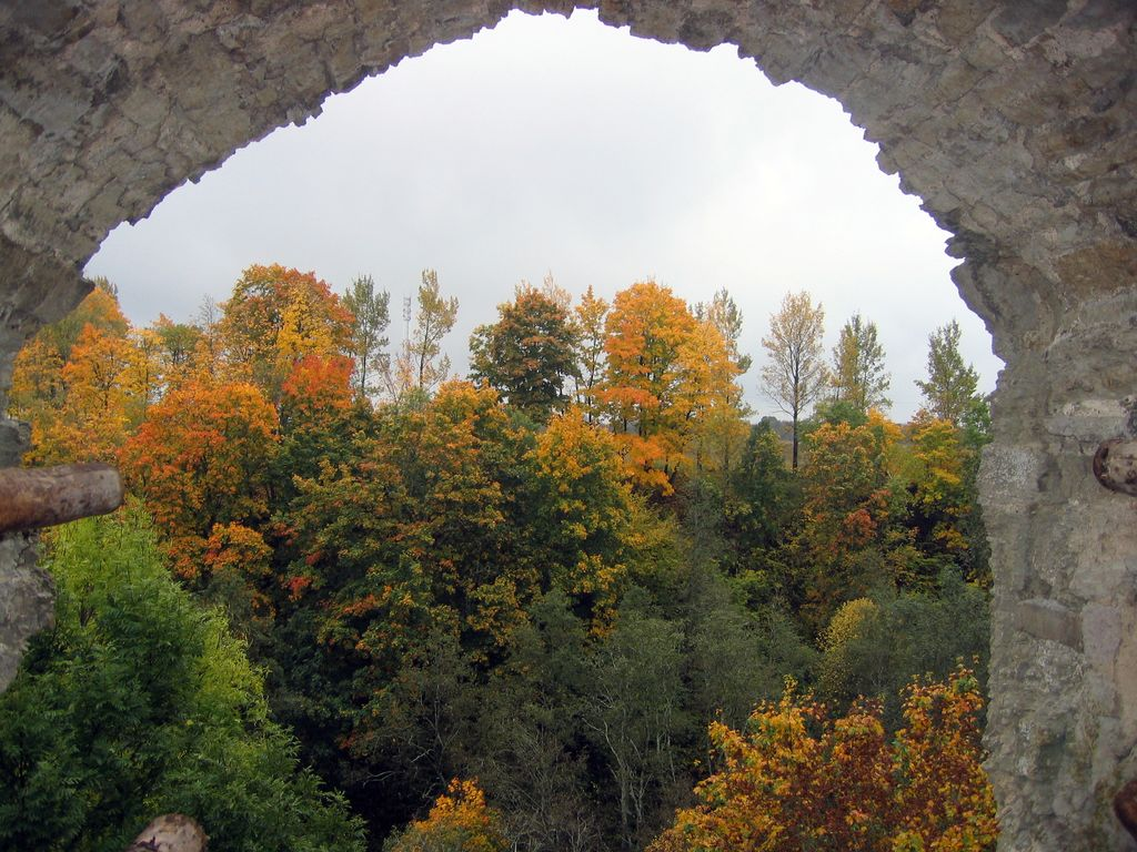 Копорская осень