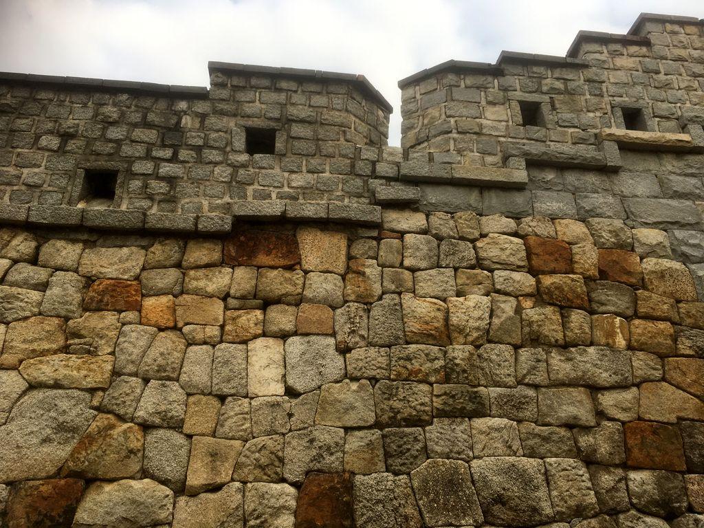 Цветущая крепость