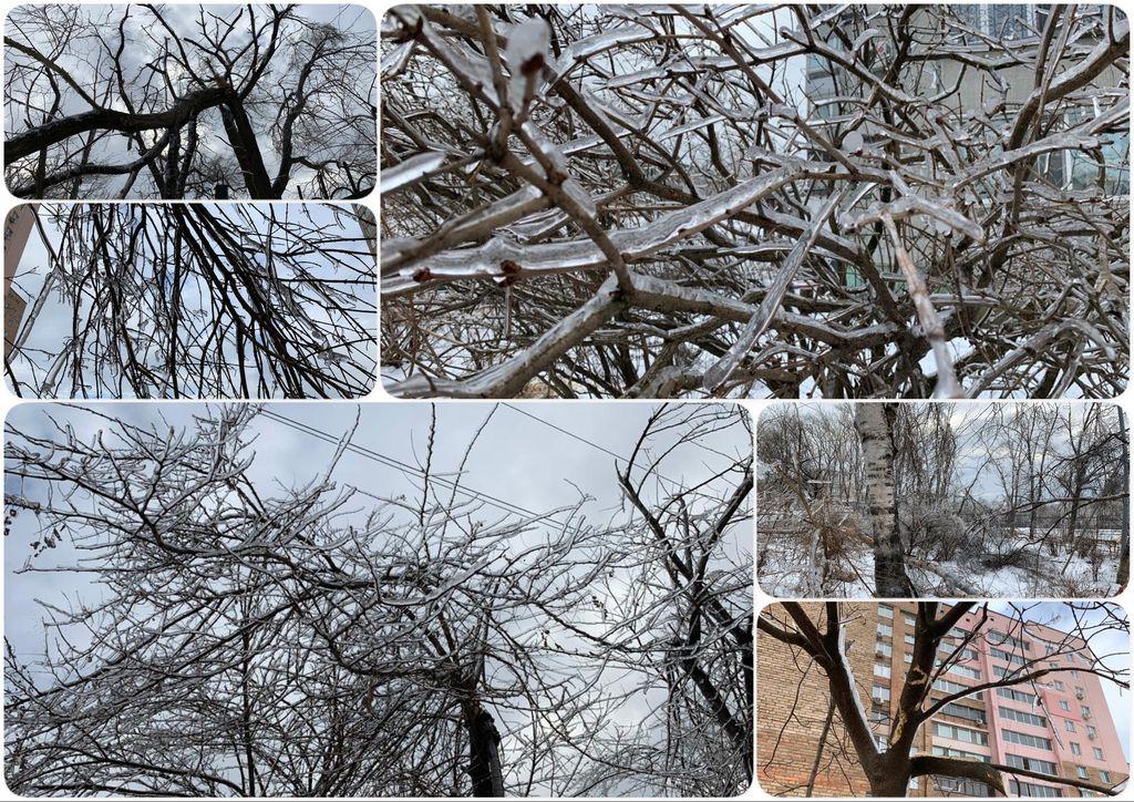 Ледяной шторм и его печальные последствия