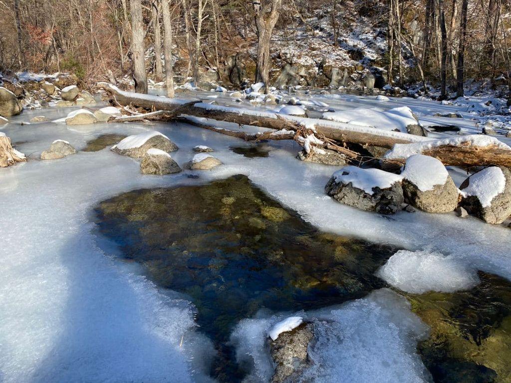 Зимняя прогулка по Смольному ручью
