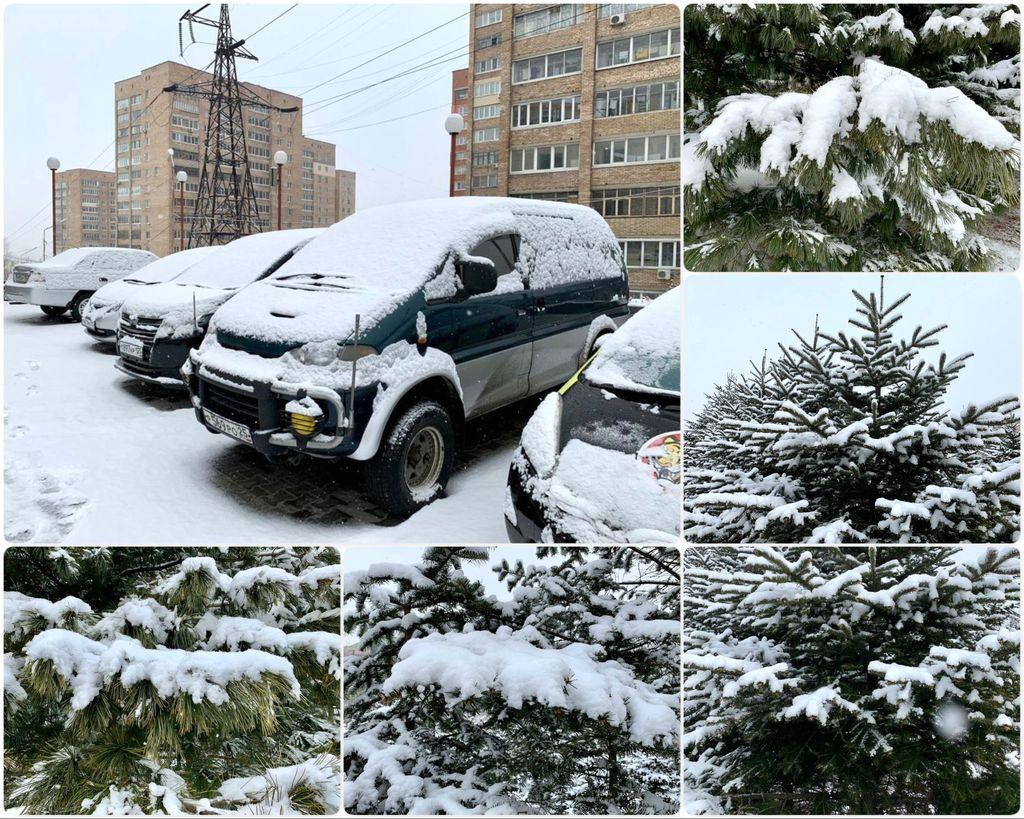 Первый снег нового года