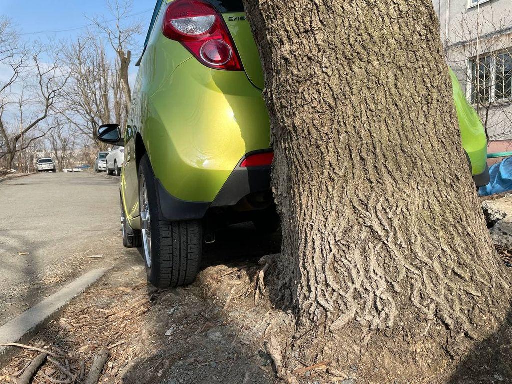 Короли парковки