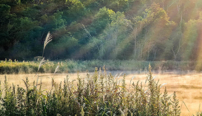 Осень и капризы природы