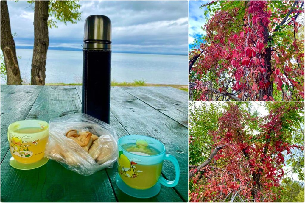 Рогалики и осень