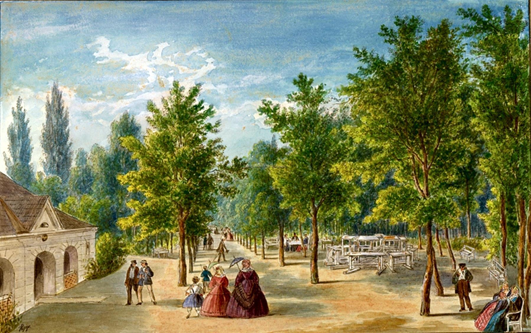 Oameni si locuri din Bucovina.Volksgarten Partie in Czernowitz.Franz Xavier Knapp(1809-1883).