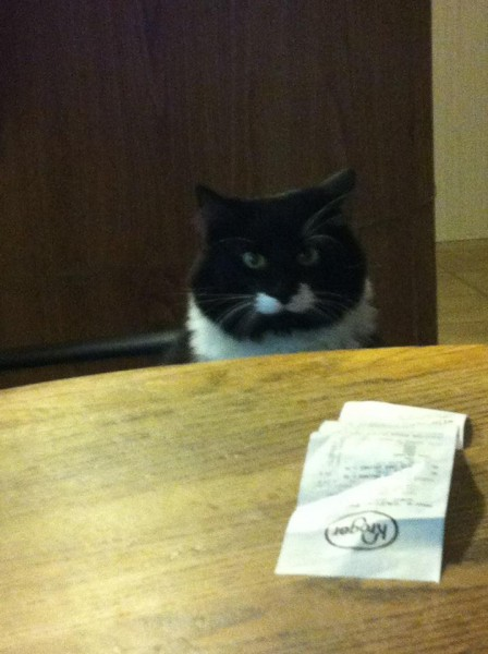kittyman at the table