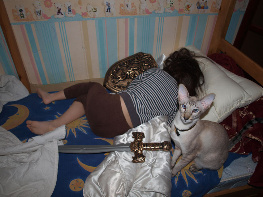 http://ic.pics.livejournal.com/drakoniha/2384947/423270/423270_original.jpg