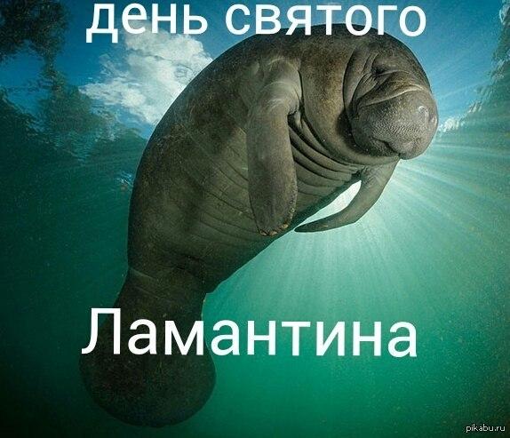 1391940674_925489094