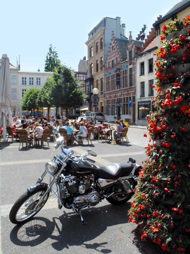 Antwerp-Belgium (5b)