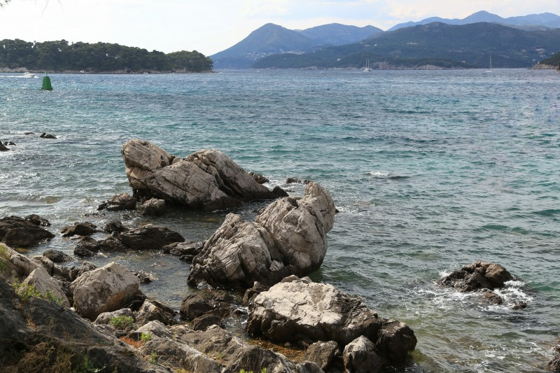 IMG_3548a1_resize