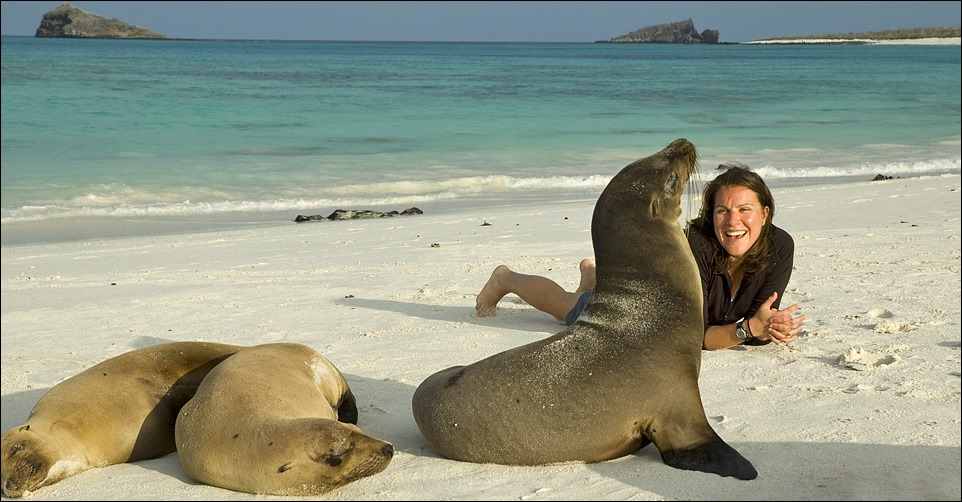 Galapagos-Kayaking-sealions-traveler