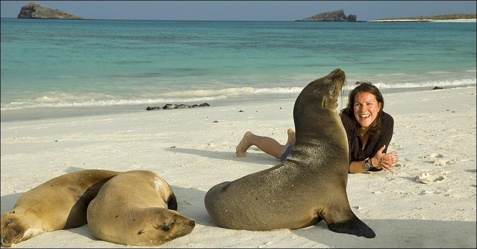 Galapagos-Kayaking-sealions-traveler