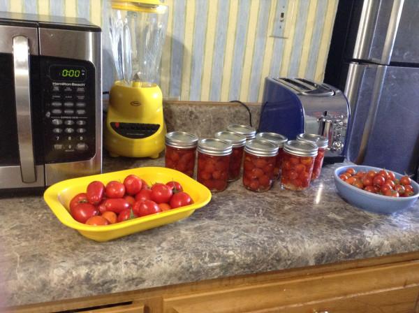 10 14 16 tomatoes 1