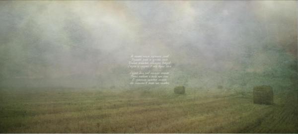 03_Через дым горящих лесов