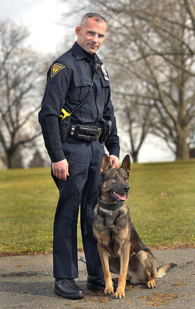 Urban Search And Rescue Dogs For Sale
