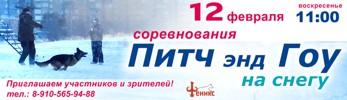 узнать подробнее о соревнованиях по Питч-энд-Гоу на снегу 12.02