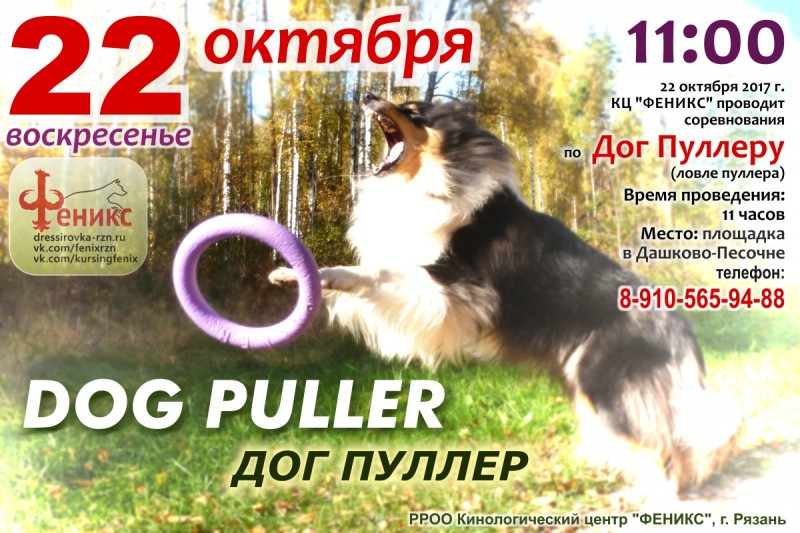 puller_fenix_22_10.jpg